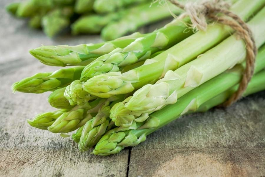 Il marchese di Pernumia: l'asparago
