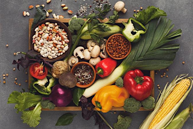 Vegetariano goumet 2020